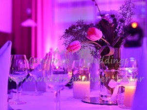 antropoti-vip-club-concierge-service-weddings8